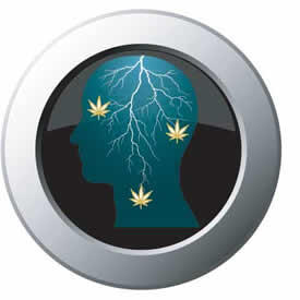 Cannabis for Epilepsy
